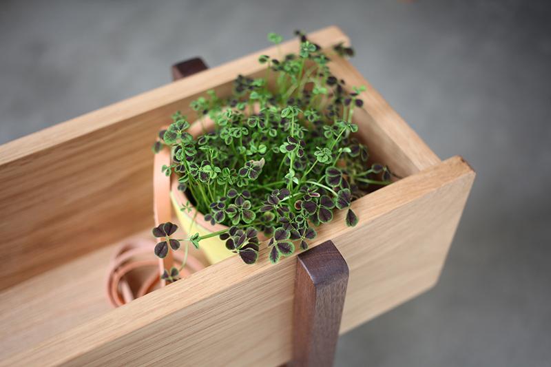 グリニッチ オリジナル プランター planter wide
